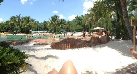 Discovery Cove : Cabana view