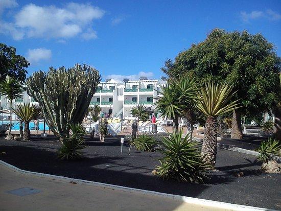 Lanzarote Palm: Vistas desde el apartamento
