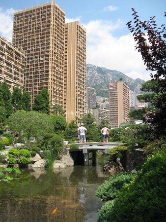 Japanese Gardens: Japanese garden