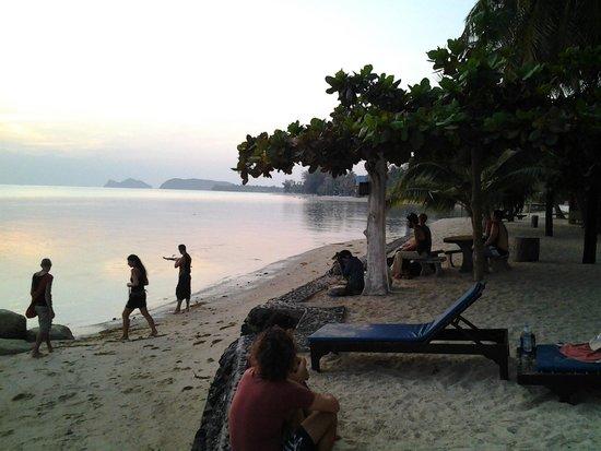 Dewshore Resort : Fun night on the beach