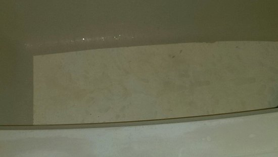 Motel 6 Norfolk: Flithy bathtub
