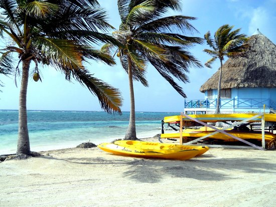 Blackbird Caye Resort: Kayaks and Palapa Bar