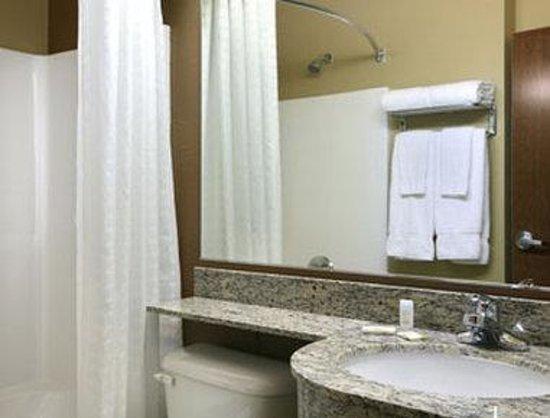 Microtel Inn & Suites by Wyndham Searcy: Bathroom