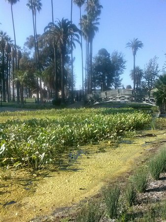 Echo Park: Beautiful gardens