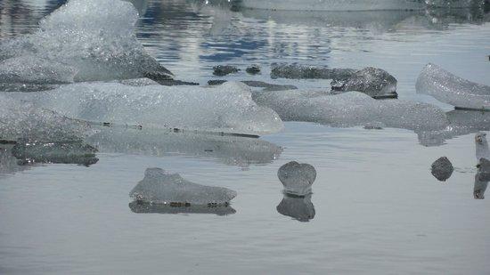 Jokulsarlon Lagoon : riflessi