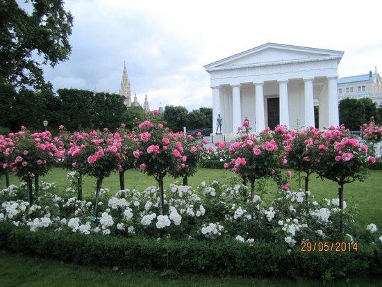 MuseumsQuartier Wien: Парк, розы