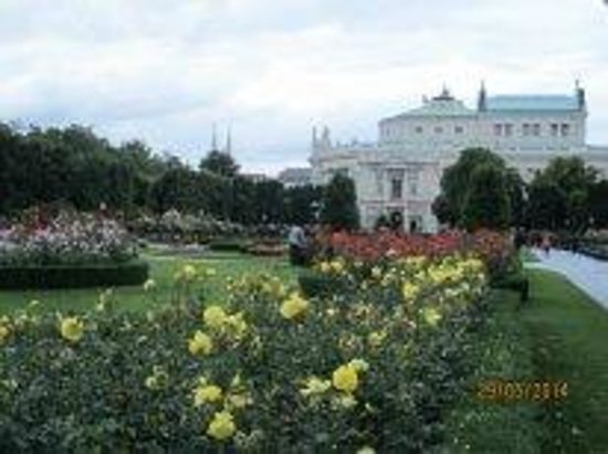 MuseumsQuartier Wien : Парк, розы