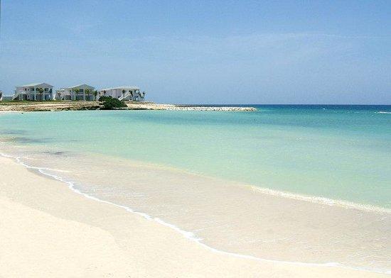 แกรนด์ปัลลาเดี่ยม รีสอร์ท&สปา: Grand Palladium Jamaica Playa Hotel