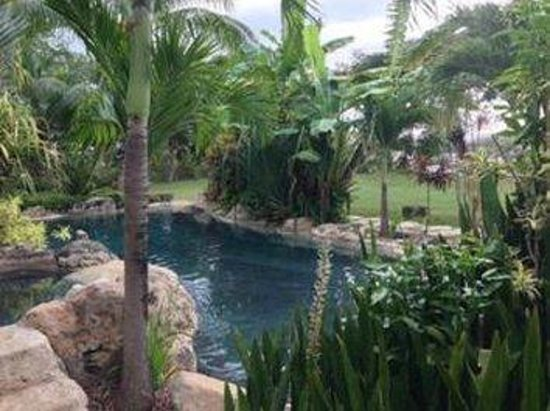 Sweetfield Manor Boutique Hotel: Pool
