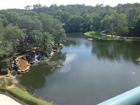 Sawgrass Marriott Golf Resort & Spa : Our view from our room