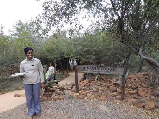 Madikwe Safari Lodge: Keba, one of our hosts