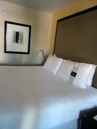 Loews Santa Monica Beach Hotel: Room 532