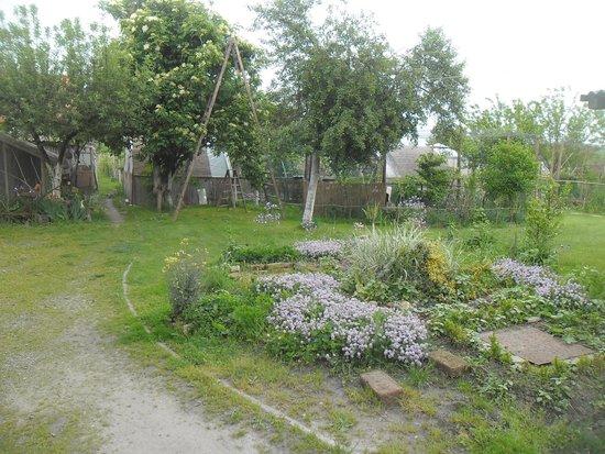 Seosko Gospodarstvo Lackovic: Yard
