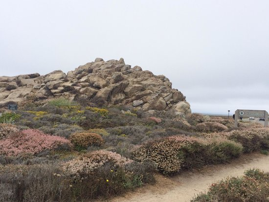 17-Mile Drive : China Rock view point at 17 Mile drive