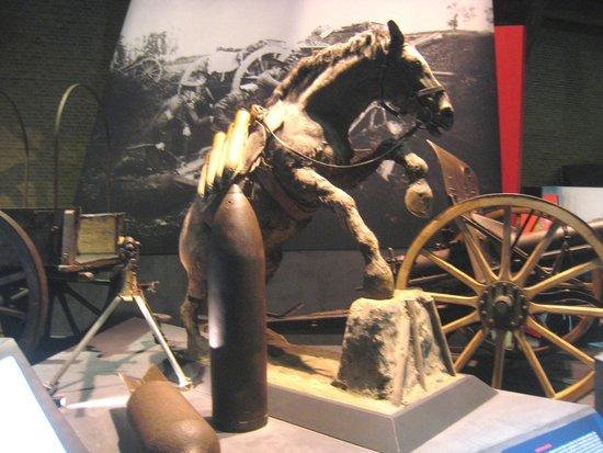 Musée de la guerre «In Flanders Field» : The use of animals in the war