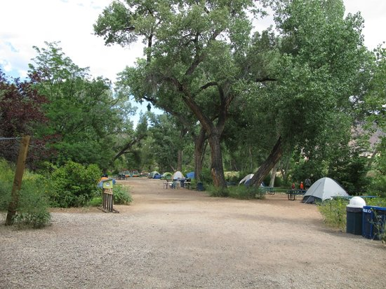 Up the Creek Campground: campground view, full campground