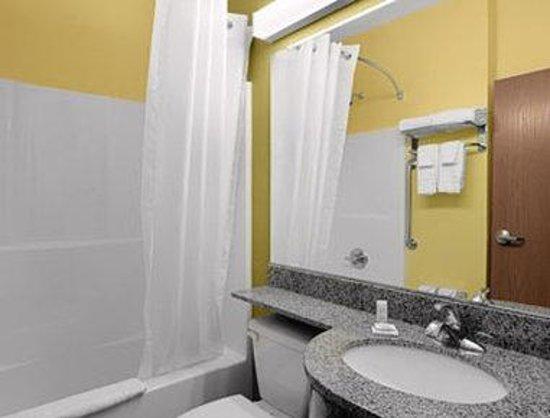 Microtel Inn & Suites by Wyndham Opelika: Bathroom