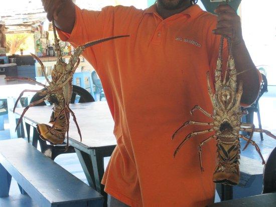 Big Bamboo: fresh lobster!!