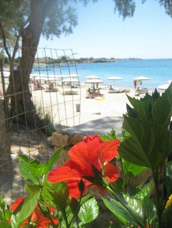Plakia beach from the beach bar