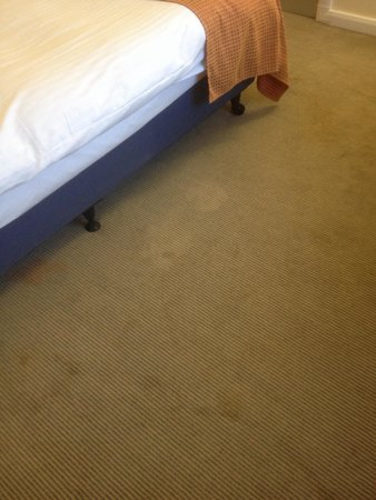 Holiday Inn Express Dundee: More nasty carpet stains !