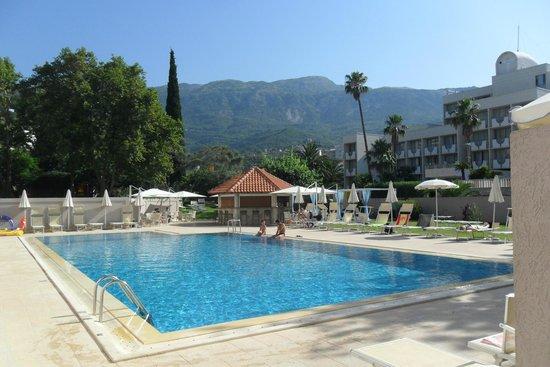 Hotel Tara : Poolside bar & gardens