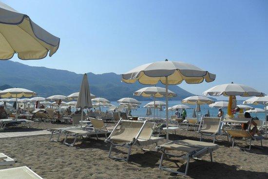 Hotel Tara : Private section of beach