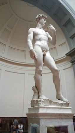 Accademia di Belle Arti (Galleria dell'Accademia): ♡♡♡