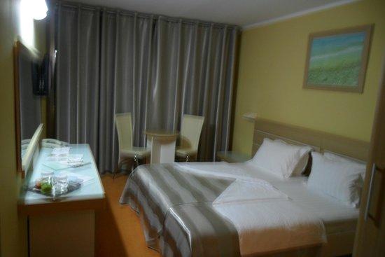 Hotel Tara : En suite room
