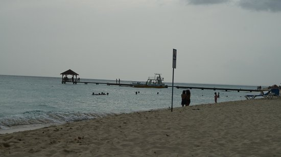 Dressel Divers Bayahibe : nice diving boat and pier