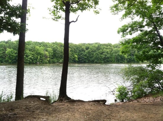 Metamora-Hadley State Recreation Area : View from our camper