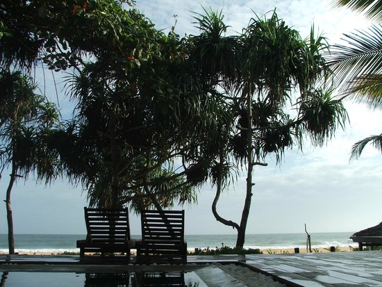 Roman Beach: У бассейна