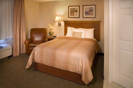 Candlewood Suites Apex Raleigh Area: Single Bed Guest Room - Candlewood Suites Apex, NC