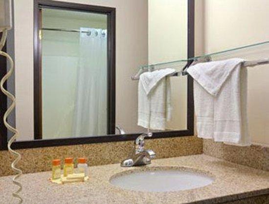 Royalton Inn & Suites : Bathroom