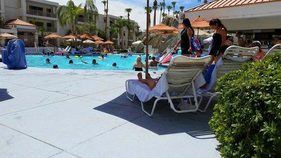 Palm Canyon Resort & Spa: Pool View