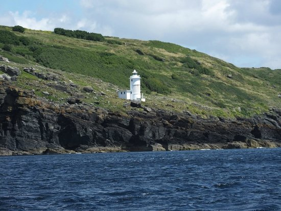 Marine Discovery: Mousehole lighthouse