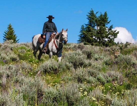 Rusty Spurr Ranch: Thanks Han!