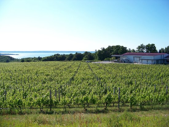 Chateau Grand Traverse Winery: winery and tasting facility