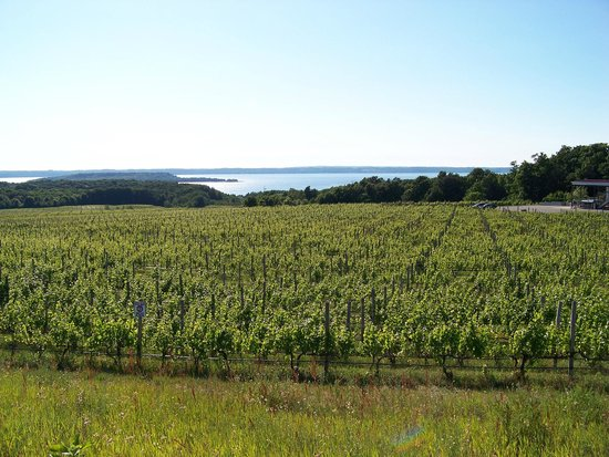 Chateau Grand Traverse Winery: winery and the bay