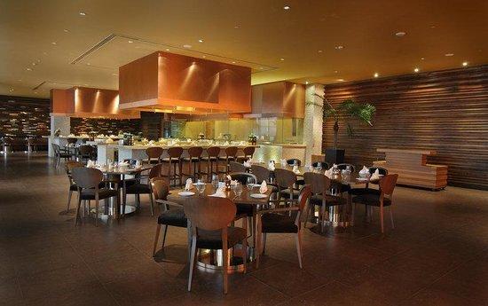 Radisson Blu Hotel New Delhi Paschim Vihar: Indyaki Restaurant