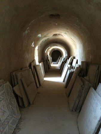 Villas Romaines: Cellar