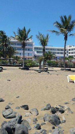 VIK Hotel San Antonio : Beach at the bottom of the hotel grounds