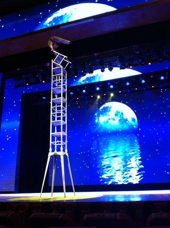 Chaoyang Theater: Amazing flexibility