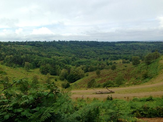 Hindhead Commons and the Devil's Punch Bowl: Devil's Punchbowl