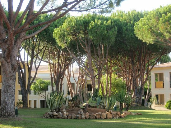 Adriana Beach Club Hotel Resort : espace hôtel et jardin