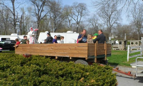Mill Bridge Village & Campresort: Hay rides every Saturday