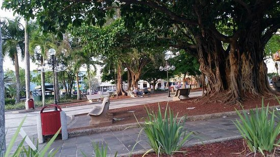 Plaza Palmer