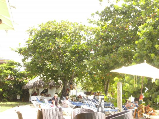 Grand Pineapple Beach Negril : opposite side chairs & Almond trees