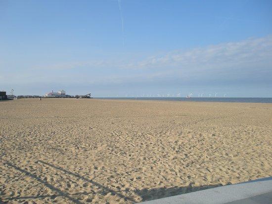 Seashells Guest House: A fantastic dog friendly beach.