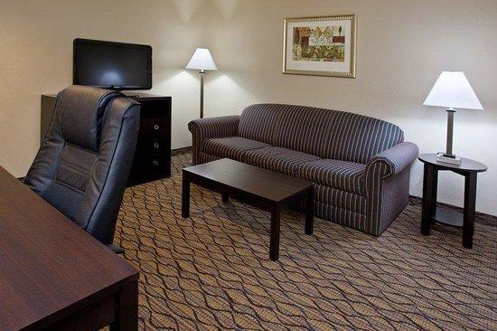 Holiday Inn Express & Suites Columbus East: Sleeper Sofa