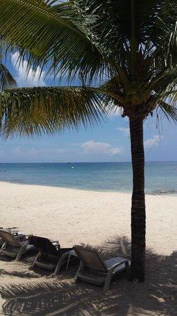 Secrets Aura Cozumel: beach